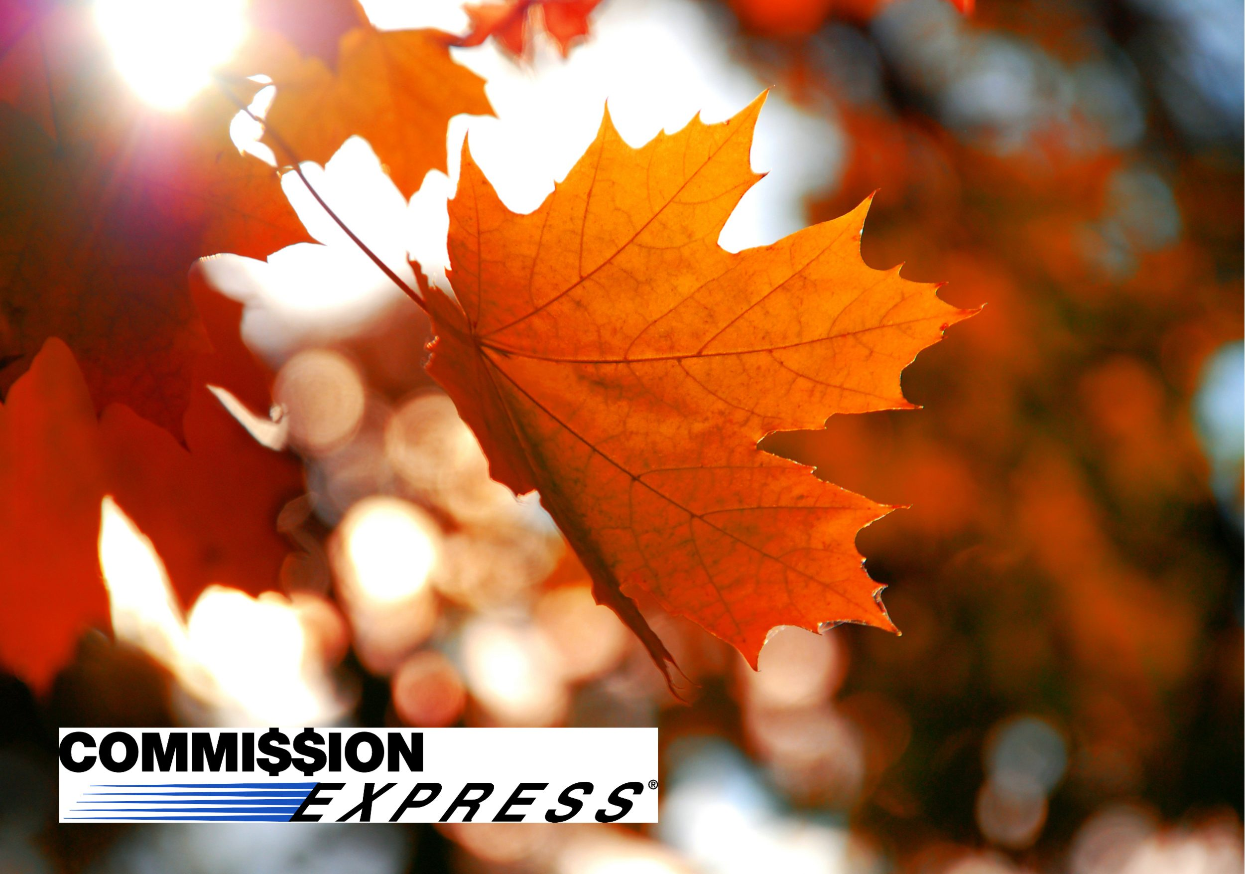 Fall into an Impressive Commission Advance: Autumn Marketing Tips